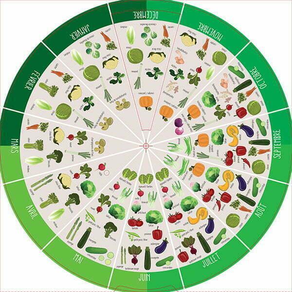 détail disque intérieur légumes